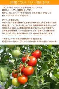 ちおちおサントマトの特徴