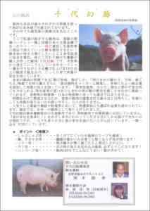 豚の水飲みの品種