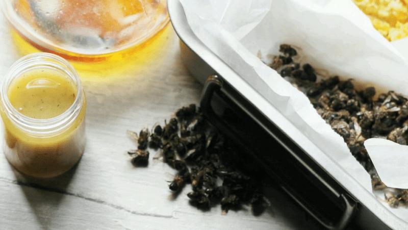 蜂の軟膏:レシピと範囲
