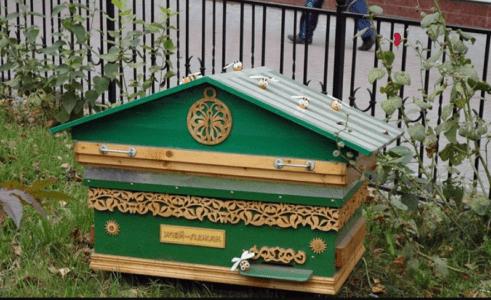 蜂の家族:構成と機能