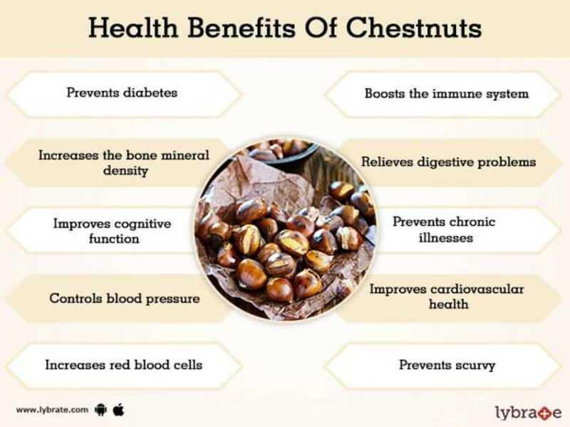 アナトーの利点、特性、カロリー含有量、有用な特性と害