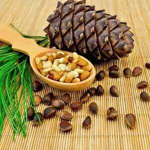 トレパン, カロリー, 利点と害, 有用な特性