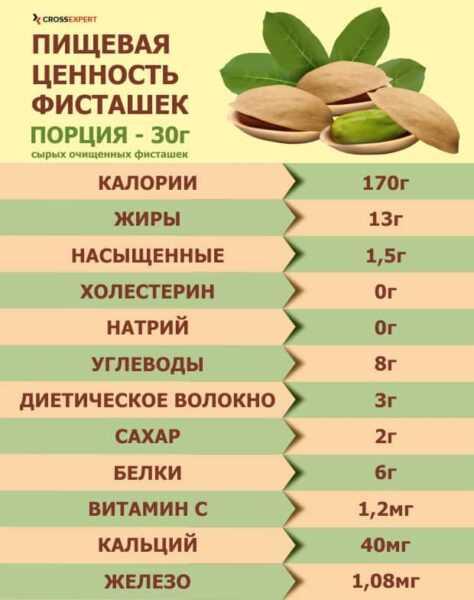 ピスタチオ オイル、カロリー、利点と害、有用な特性