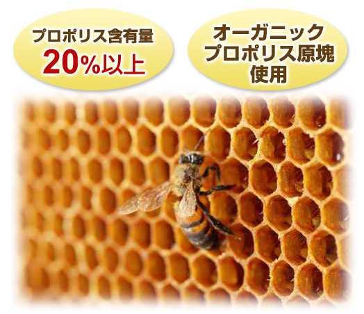 プロポリスと蜂蜜:なぜそれが役立つのですか?