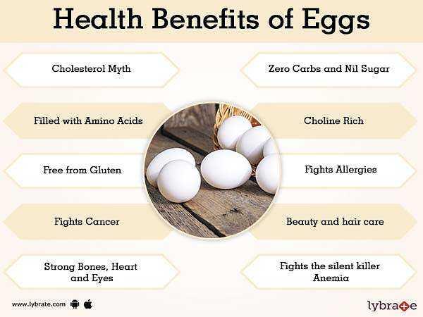 ホロホロチョウの卵、カロリー、利点と害、有用な特性