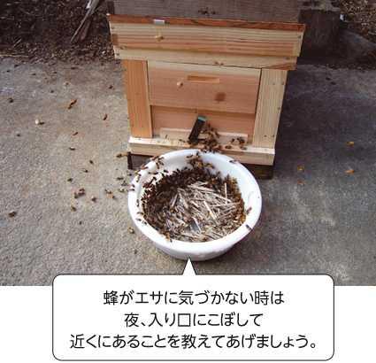 ミツバチの餌箱