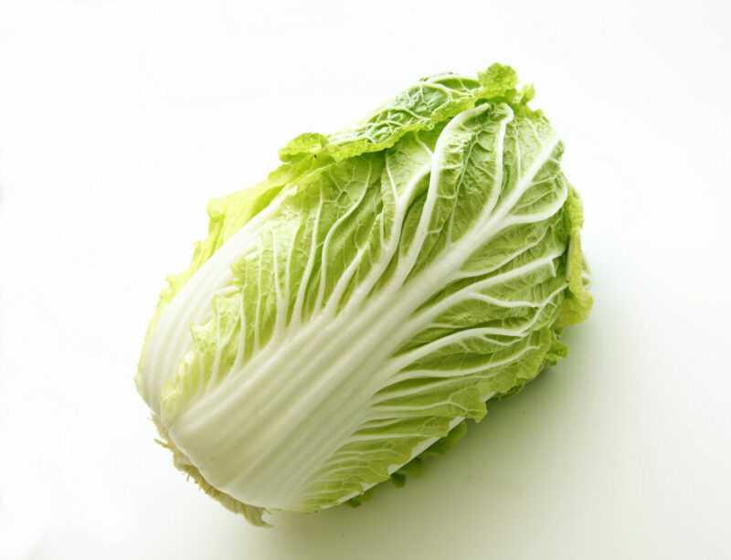 白菜、カロリー、メリットと害、便利なプロパティ