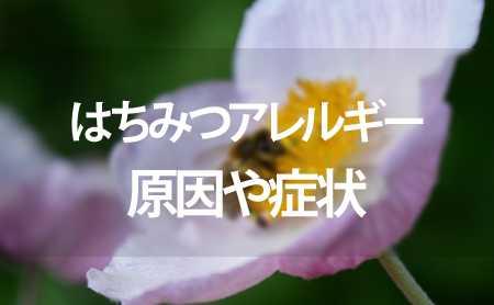 蜂蜜アレルギーはどのように現れ、症状は何ですか?
