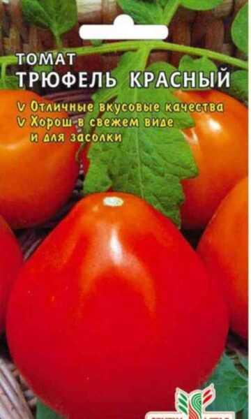Os tomates mais populares para a Sibéria