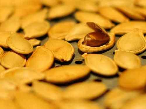 Propriedades úteis de farinha de abóbora
