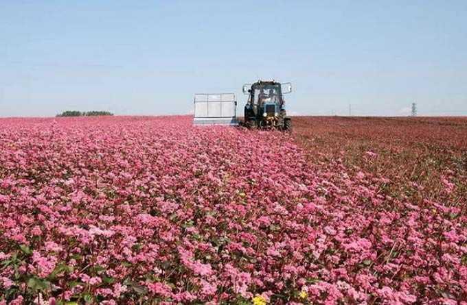 tarımsal teknoloji