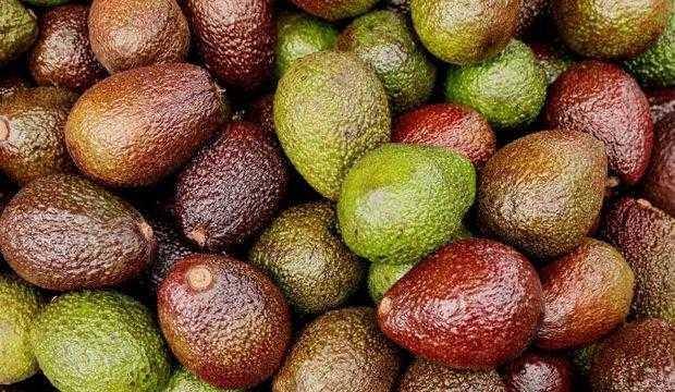 Mosswheel, Kaloriler, faydalar ve zararlar, Faydalı özellikler